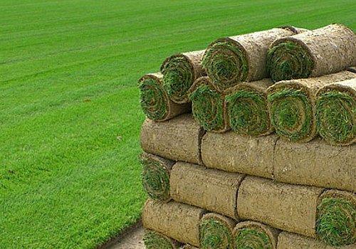 hoeveel grasmatten nodig
